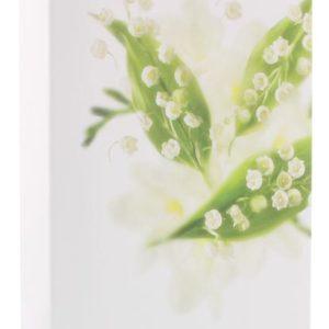 Lily zeep box 3 x 100 gram