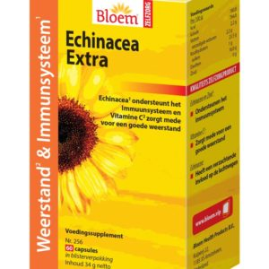 BLOEM ECHINACEA EXTRA 256 60C