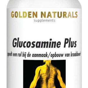 Gn Glucosamine Plus 100 Tabl
